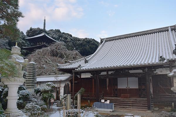 當麻寺護念院ほんのり雪景色