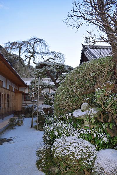 護念院北庭ほんのり雪景色